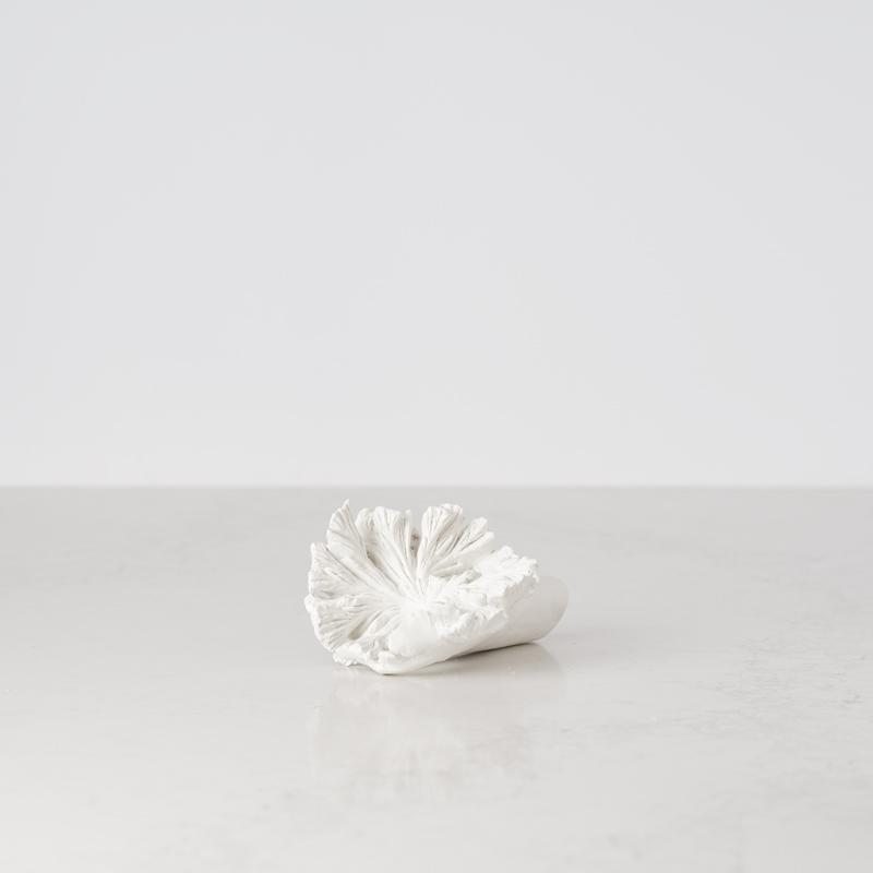200522 Bates Design Product Shots0898 white sponge